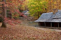 Ogle Homestead in Autumn