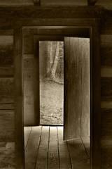 Rustic Cabin Light