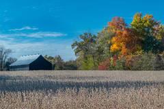 A Caldwell Autumn