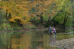 Fly-Fishing The Red