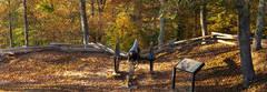 Fort Lyon Atop Cumberland Gap