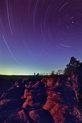 Star Trails  Across The Garden