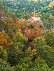 Red River Gorge National Geological Area, Daniel Boone National Forest, Kentucky, Autumn scenic, Kentucky Landscape, Jer