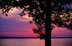 Last Light Over Kentucky Lake