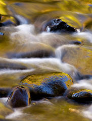 stream, autumn, Great Smoky Mountains National Park, rapids, color, waterfall,