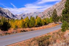 A Drive Through Lundy Canyon