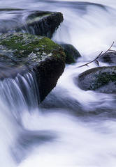 rapids, streams, moss, smokies, Great Smoky Mountains National Park, Jeremy Brasher, jeremybrasher.com