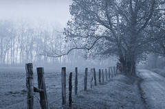 Cades Cove, Sparks Lane, Smokies hertiage, fence, Great Smoky Mountains,