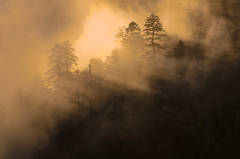 Mortons Overlook, Jeremy Brasher, Great Smoky Mountains, Sunset, Mist, Fog, Sun beams