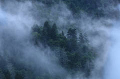 Clearing Storm In The Smokies