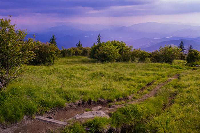 Andrews Bald, Storm, Jeremy Brasher, Great Smoky Mountains, June Bloom, photo
