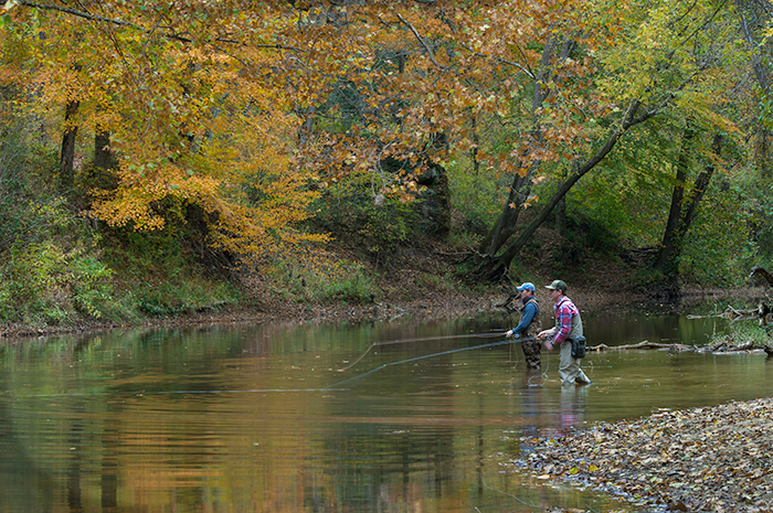 Fly fishing the red red river gorge daniel boone for Fly fishing kentucky