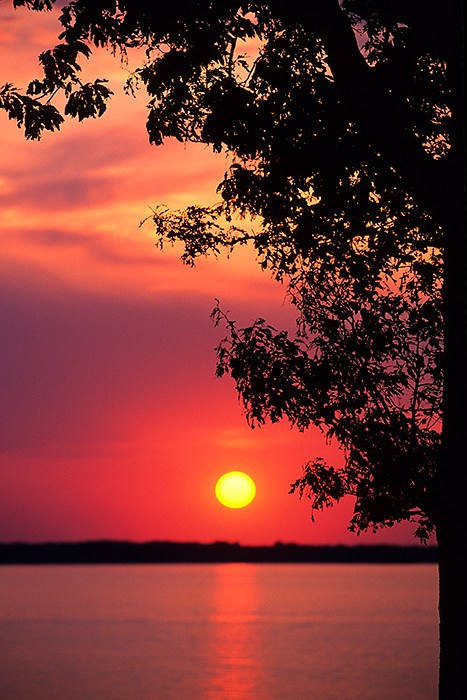 Kentucky, Kentucky lake, sunset, Land Between the Lakes, photo