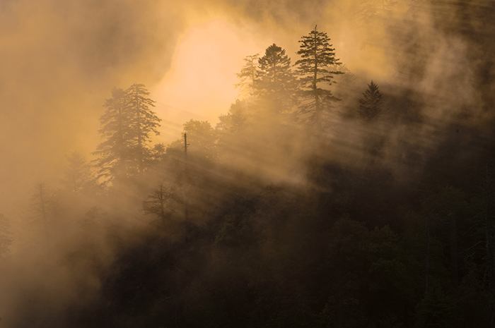 Mortons Overlook, Jeremy Brasher, Great Smoky Mountains, Sunset, Mist, Fog, Sun beams, photo