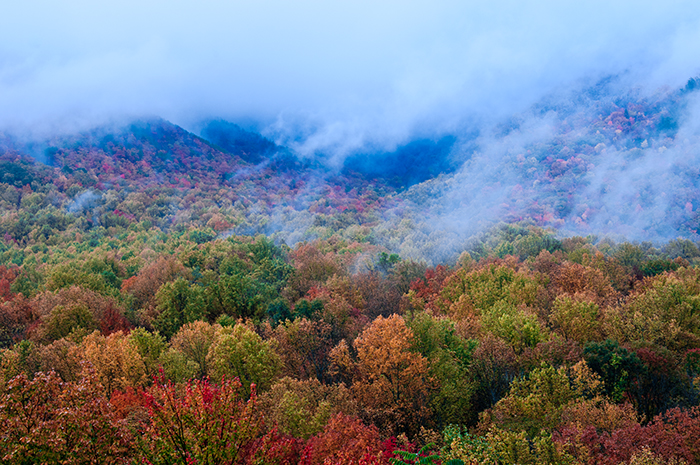 Campbell Overlook, Autumn, Autumn Storm, Great Smoky Mountains Photo, Jeremy Brasher, photo