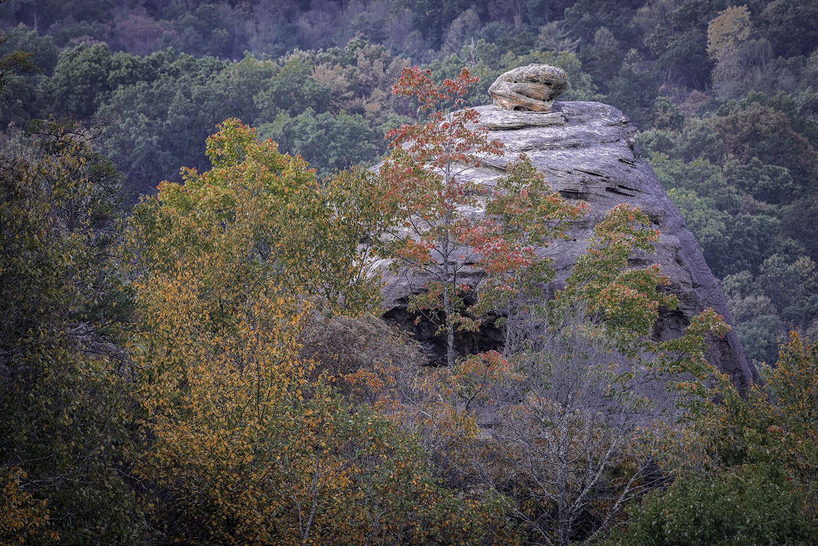 Red River Gorge, Auxier Ridge Trail, Daniel Boone National Forest, Haystack Rock, photo