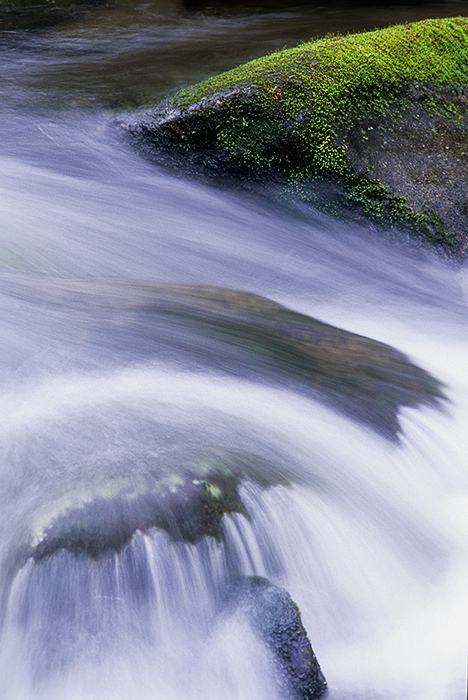 Great Smoky Mountains National Park, streams, moss, silky-water effect, , photo