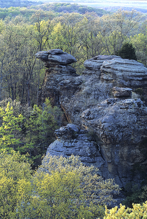 Camel Rock, Shawnee National Forest, Garden of the Gods, Southern Illinois, jeremybrasher.com, Jeremy Brasher, spring sc, photo